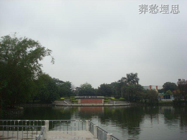 东莞石排公园 摄友沙龙图片