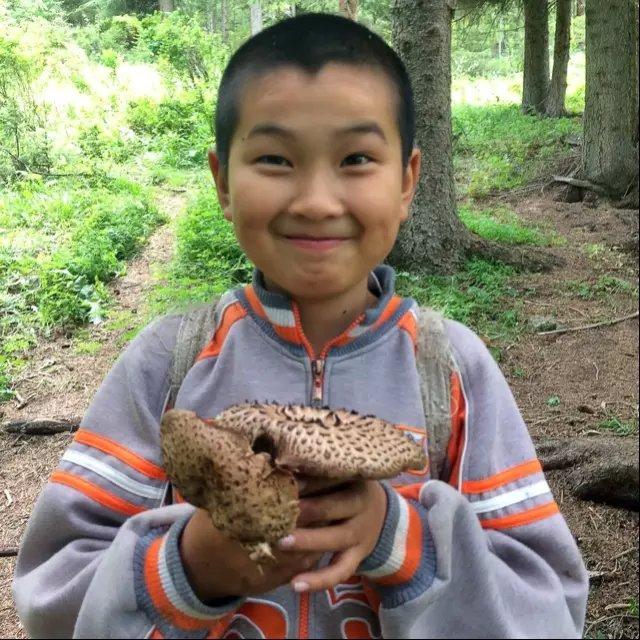 采蘑菇的小男孩