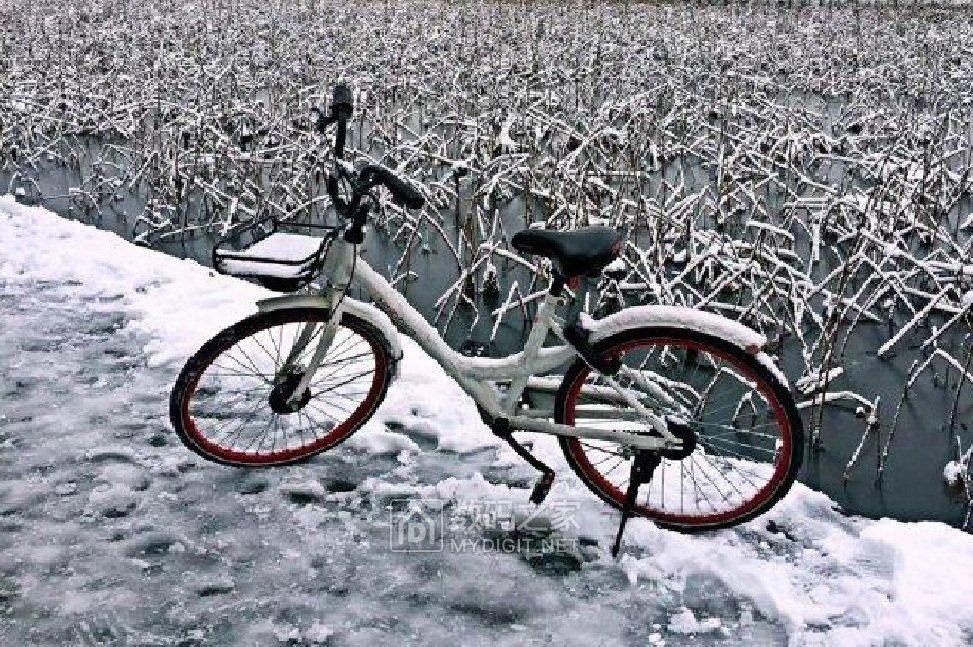 骑上单车玩雪去喽