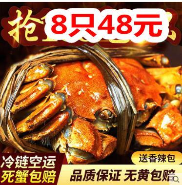 螃蟹8只48元!俞兆林全尺寸凉席49!南极人牛仔裤34!竹浆抽纸27