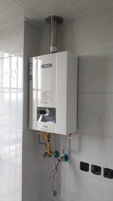 想问问大家能率燃气热水器质量怎么样?好不好用啊?