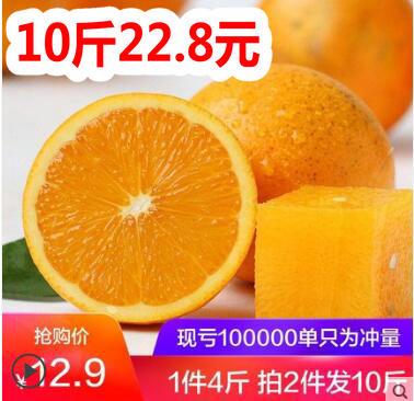 冰糖橙10斤19.8!万能