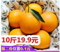 高山脐橙10斤19.8!万