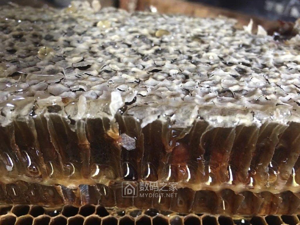 年前最后一批高性价比936,良心之作!蜂农自产陈椴蜜,坛友包邮非偏远