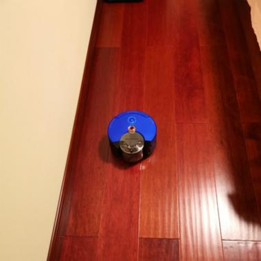 戴森RB02-blue扫地机器人质量怎么样?好不好?谈谈戴森RB02-blue使用感受测评