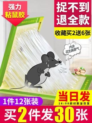 灭鼠神器 强力粘鼠板 1