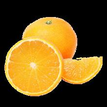 橙子!非常好吃的脐橙6