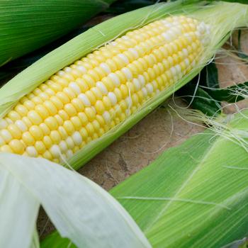 10斤东北五常稻花香大米23.9元,超市同款动辄40多,值得屯。澳洲整切牛排1300克118元