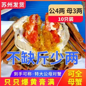 新开拼多多 第三代健康骨瓷筷子 数码交易区 - 数码之家